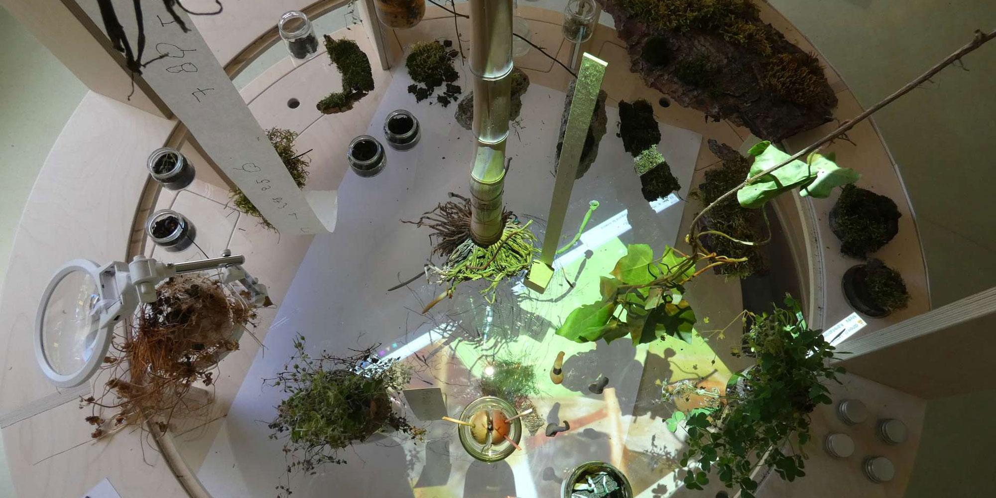 Vista dall'alto aula apprendimento con piante