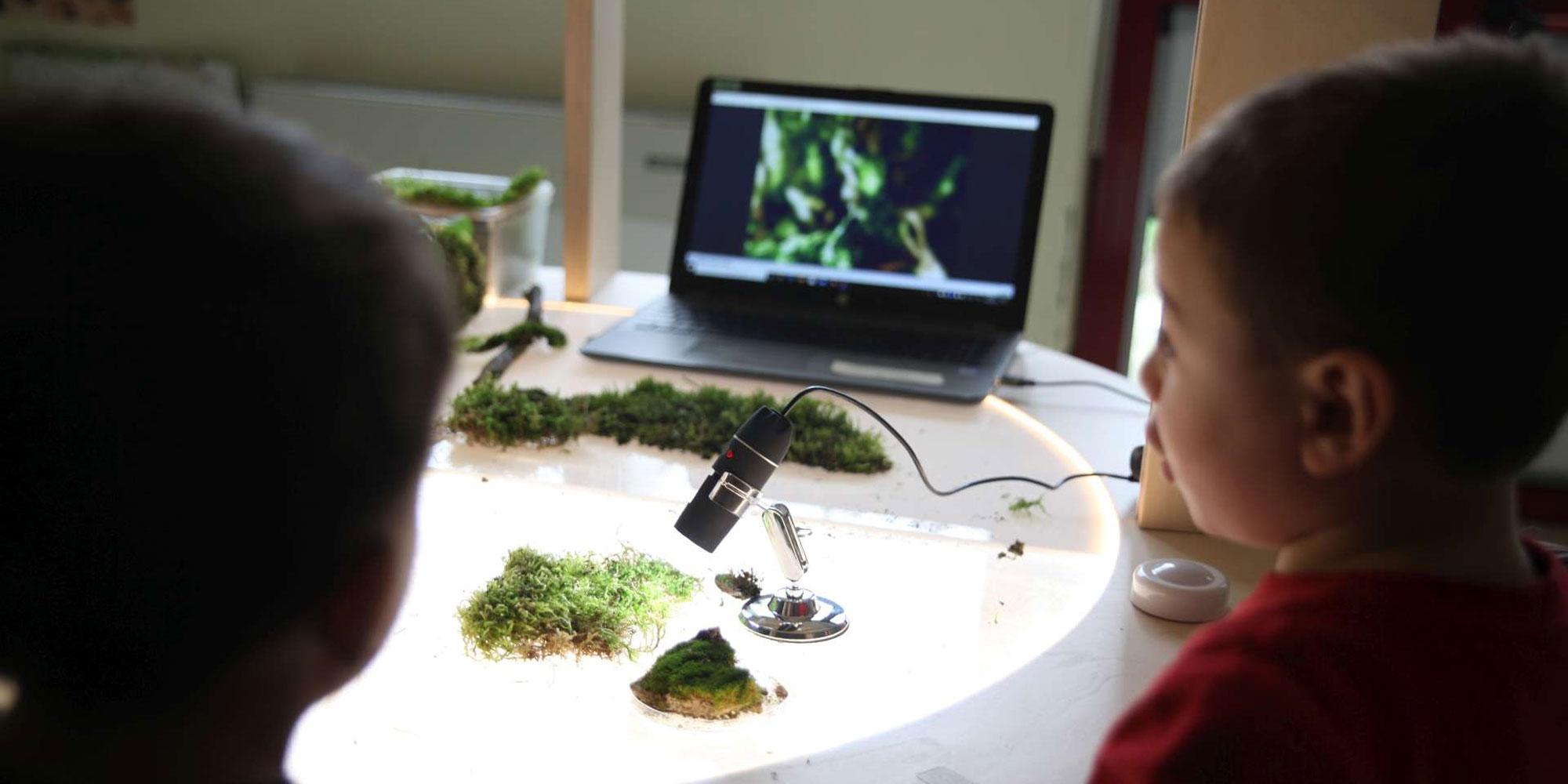 Dettagli bambini studio piante