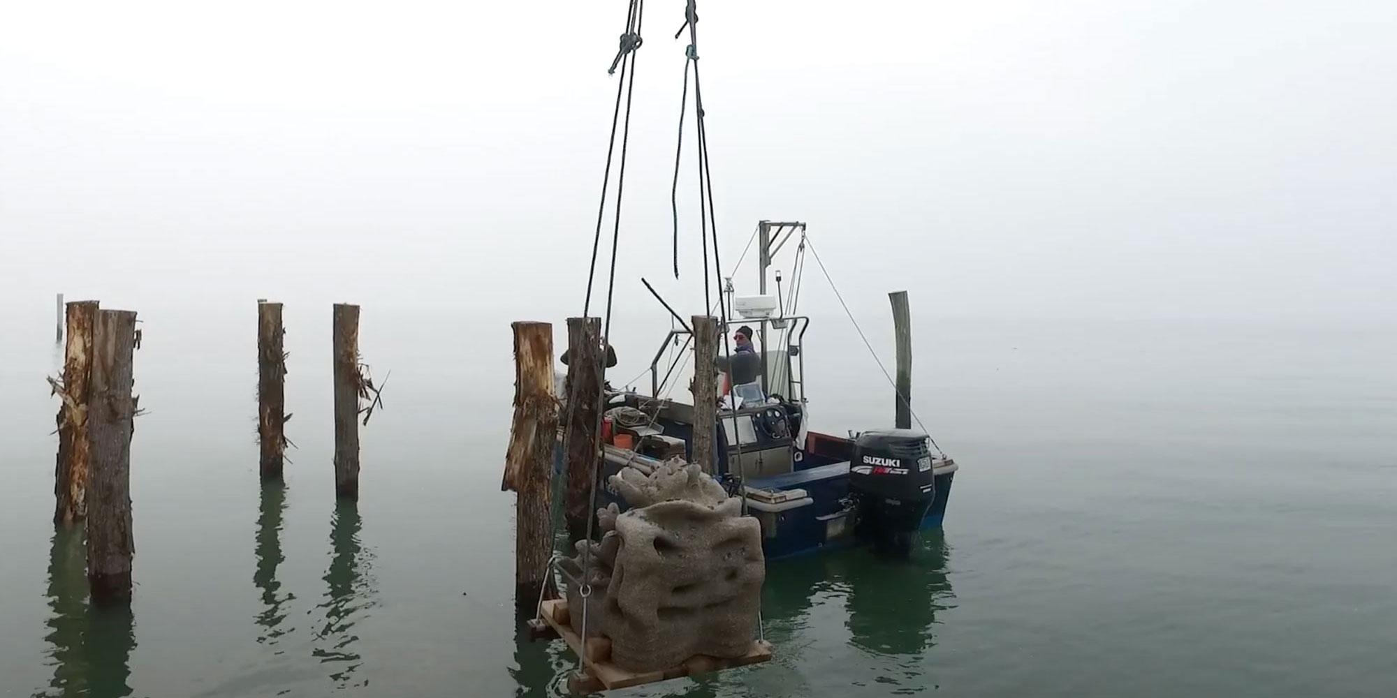 barca da pesca con nebbia